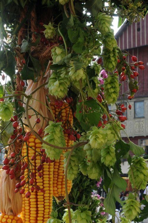Am heutigen Freitag, 1. Oktober, findet in der Innenstadt von Dornbirn der Herbstmarkt statt.Stadt