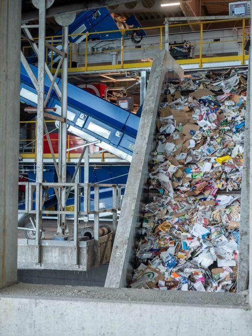 Die neue Altpapier-Sortieranlage von Loacker Recycling in Götzis wurde in Rekordzeit konstruiert und ist nun bereits in Betrieb. FA