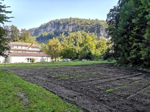 Die Fläche, die derzeit noch recht kahl wirkt, soll durch die richtige Bepflanzung zu einem Paradies für Schmetterlinge und deren Raupen werden. STadt