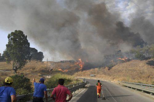 Durch Hitze und anhaltende Trockenheit in verschiedenen Gebieten gab es in diesem Sommer auch gehäuft Waldbrände. ap