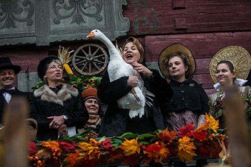 Ganter Eduard darf heuer im Stall bleiben: Die Martinimarkteröffnung mit der Bürgermeisterin auf dem Balkon des Roten Hauses fällt heuer erneut aus. VN/Steurer