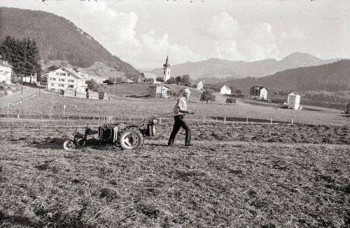 Hittisau, Heuernte, 1969