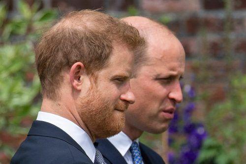 Verraten Details aus dem Privatleben der Queen: Harry und William. afp