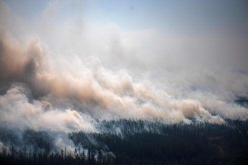 Waldbrände setzen enorme Mengen CO2 frei. In diesem Jahr wurden dadurch Kohlenstoff-Emissionen in Rekordhöhe verursacht. ap