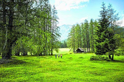 Zum Wandern am Mieminger Plateau gibt es eine eigene Hiking-Fibel.