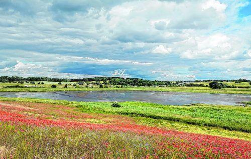 Der Nationalpark Skjoldungernes Land eignet sich hervorragend für Wanderungen.