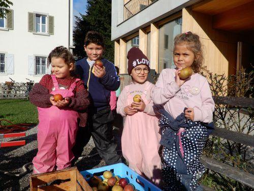 Die Kinder beschäftigen sich mit Lebensmitteln, in diesem Fall mit Äpfeln.cth (4)