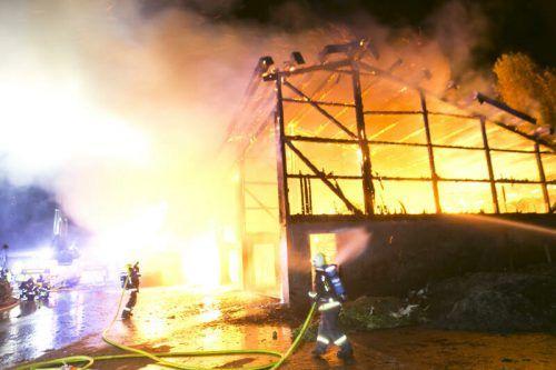 Rund 200 Feuerwehrleute waren am Einsatz beteiligt. d. mathis