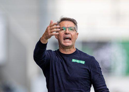 SCRA-Trainer Damir Canadi erwartet von seiner Mannschaft beim Auswärtsspiel bei Admira Wacker eine Reaktion auf die 0:4-Pleite gegen Klagenfurt.apa